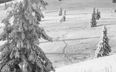 Fotospots im Schnee – Winterspots in Deutschland
