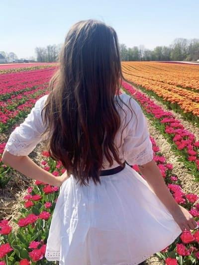 Tulpenfelder in Deutschland - Paulushof Grevenbroich